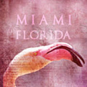 Miami Florida- Pink Flamingo Art Print