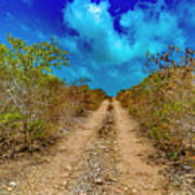 Middle Caicos Rocky Road Art Print