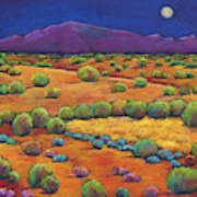 Midnight Sagebrush Art Print