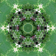 Mossy Green Art Print