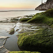Mossy Rocks At Pismo Beach Art Print