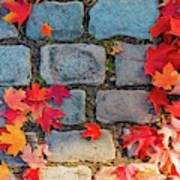 Natural Autumn Leaf Background  Art Print
