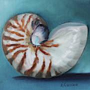 Nautilus Shell Art Print