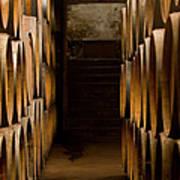 Oak Barrels At The Wine Cellar Art Print