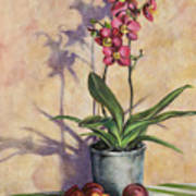 Orchids And Plums Art Print