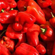 Organic Red Peppers Art Print