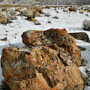 Ornate Colorful Boulders In The Book Cliffs Art Print