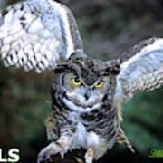 Owls Mascot 2 Art Print