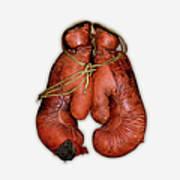 Pair Of Boxing Gloves, Close-up Art Print