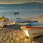 Panga Boats On Beach Along Bahia De San Art Print