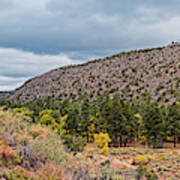 Panorama Of Cliff Dwelling And Fall Cottonwoods In Frijoles Canyon - Bandelier National Monument  Art Print