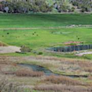 Peaceful Farm In Durango Art Print