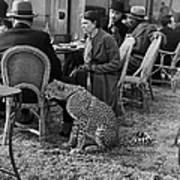 Pet Cheetah Art Print