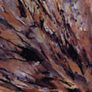 Petrified Wood Art Print