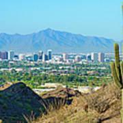 Phoenix Skyline Framed By Saguaro Art Print