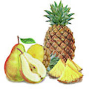 Pineapple Pear Watercolor Food Illustration  Art Print