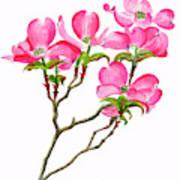 Pink Dogwood Vertical Design Art Print