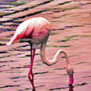Pink Flamingo Two Art Print