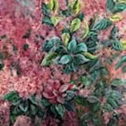 Pink Infusion Art Print