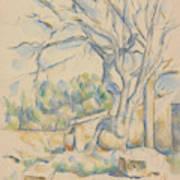 Pistachio Tree At Chateau Noir Art Print
