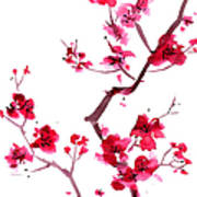 Plum Blossom Painting Art Print