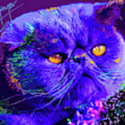 pOpCat Captain Blue Chip Art Print