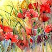 Poppies Bathing In The Sun Art Print