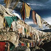 Prayer Flags Above Leh, Ladakh, Leh Art Print