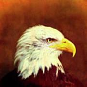 Profile Eagle Grunge Art Print