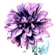 Purple Blend Petals Two Art Print
