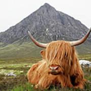 Quintessential Scotland Art Print