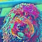 Rainbow Pup Art Print