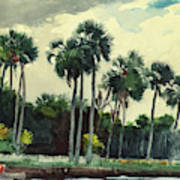 Red Shrt, Homosassa, Florida Art Print