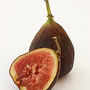 Ripe, Fresh Figs On White Background Art Print