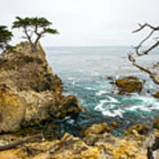 Rocky Cliff And Trees In Carmel Near Art Print