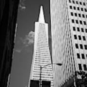 San Francisco - Transamerica Pyramid Bw Art Print