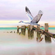 Sandhill Crane And Old Dock Art Print