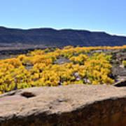 Sandstone Above Golden River Desert Landscape Art Print