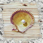 Sea Shell Beach House Rustic Chic Decor IIi Art Print