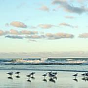 Seagulls In Heaven V2 Art Print