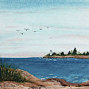 Seagulls Over Lighthouse Cove Art Print
