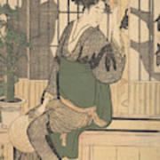 Shadows On The Shoji Art Print