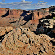 Shafer Canyon In Canyonlands Np Art Print