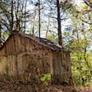 Shed In Tennessee Art Print