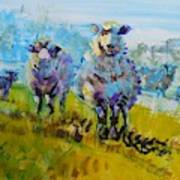 Sheep And Lambs In Bright Sunshine Art Print