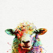 Sheep Portrait Art Print