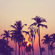 Silhouette Of Palm Trees At Sunset Art Print