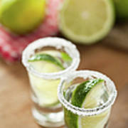 Silver Tequila, Limes And Salt Art Print