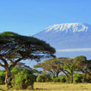 Snow On Top Of Mount Kilimanjaro In Art Print