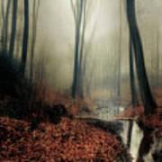 Sounds Of Silence Art Print
